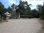 View larger image of Campsite with picnic bench at ANCIENT CEDARS MESA VERDE RV PARK image #2