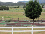 View larger image of Miniature golf course at ANCIENT CEDARS MESA VERDE RV PARK image #4