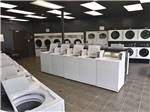 View larger image of Enormous trees surrounding campsites at GLOWING EMBERS RV PARK  TRAVEL CENTRE image #4