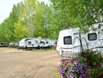 View larger image of Landscaped floral surrounding trailer at GLOWING EMBERS RV PARK  TRAVEL CENTRE image #10