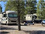 View larger image of RVs parked under pine trees at BRYCE CANYON PINES STORE  CAMPGROUND  RV PARK image #3