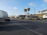 View larger image of RVs and trailers at campground at DOCKWEILER RV PARK image #4