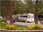 View larger image of RVs parked at CROWN VILLA RV RESORT image #1