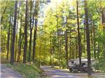 View larger image of RV parked in a site under tall trees at KING PHILLIPS CAMPGROUND image #6