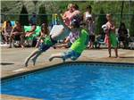 View larger image of Large trees surrounding RVs at KING PHILLIPS CAMPGROUND image #10