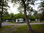 View larger image of RVs and trailers at campgrounds at CAPRI COURT CAMPGROUND image #4