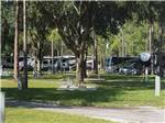 View larger image of Campgrounds at LION COUNTRY SAFARI KOA image #2