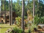 View larger image of Log cabin with deck at LION COUNTRY SAFARI KOA image #5