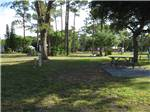View larger image of RV camping at LION COUNTRY SAFARI KOA image #7