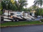 View larger image of RVs parked in sites under trees at LAKESIDE RV CAMPGROUND image #11