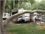 View larger image of Trailers camping at RANCHO SEDONA RV PARK image #4