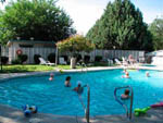 View larger image of People swimming in the pool at ORCHARD RANCH RV RESORT image #3