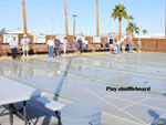 View larger image of Shuffleboard courts at SUN VISTA RV RESORT image #2