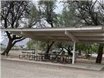 View larger image of Trailers parked beside loaded picnic tables at SHADY ACRES RV PARK image #12