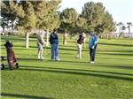 View larger image of Foursome playing golf at WESTWIND RV  GOLF RESORT image #4