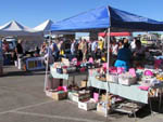 View larger image of Farmers Market at WESTWIND RV  GOLF RESORT image #12