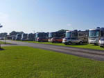 View larger image of RVs camping at LITTLE WILLIES RV RESORT image #8