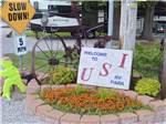 View larger image of Flowers at campgrounds at USI RV PARK image #4