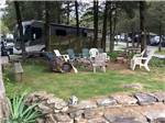 View larger image of RV camping at VOLUNTEER PARK FAMILY CAMPGROUND image #1