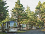 View larger image of RVs camping at CANNON BEACH RV RESORT image #5