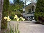 View larger image of Trailer camping at BURNABY CARIBOO RV PARK image #3