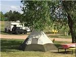 View larger image of A tent under a tree with a picnic table at FALCON MEADOW RV CAMPGROUND image #2