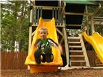View larger image of Boy sliding down slide at playground at LEDGEVIEW RV PARK image #12