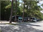 View larger image of Man in RV at TALLAHASSEE RV PARK image #2