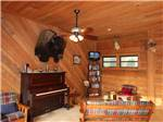 View larger image of Trucks parked in front of trailers at TALLAHASSEE RV PARK image #10