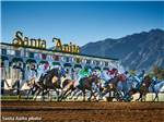 View larger image of The horse racing at Santa Anita Raceway nearby at FAIRPLEX RV PARK FORMERLY LOS ANGELESPOMONA KOA image #6