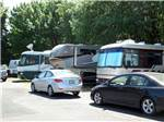 View larger image of Row of big rigs in sites and cars at PORTLAND WOODBURN RV PARK image #9