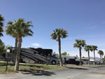View larger image of PAHRUMP OASIS RV RESORT at PAHRUMP NV image #5