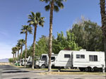 View larger image of PAHRUMP OASIS RV RESORT at PAHRUMP NV image #6