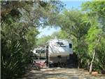View larger image of Trailers and RVs camping at NORTH BEACH CAMP RESORT image #12