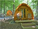 View larger image of Camping cabins in the woods at CHERRY HILL PARK image #8