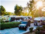 View larger image of Overview of a group of people eating at one of the RV sites at ESCONDIDO RV RESORT - SUNLAND image #12