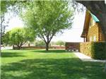 View larger image of Large grassy area and bbq at clubhouse at WILLOWWIND RV PARK image #3