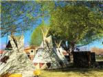 View larger image of Teepees camping at WILLOWWIND RV PARK image #12