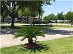 View larger image of RVs and trailers at campground at HOUSTON EAST RV RESORT image #6