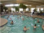 View larger image of People swimming in the pool at MISSION VIEW RV RESORT image #3