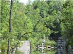 View larger image of A pond surrounded with trees at DORSET RV PARK image #6