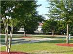 View larger image of BARNYARD RV PARK at LEXINGTON SC image #8