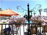 View larger image of Swimming pool at campground at PISMO SANDS RV PARK image #1
