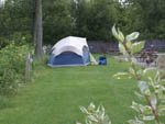 View larger image of Tent camping at NIAGARA FALLS CAMPGROUND  LODGING image #8