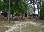 View larger image of RVs and trailers at campground at SUNSET KING LAKE RV RESORT image #4