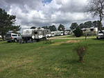 View larger image of Trailers and RVs camping at HILLTOP RV PARK image #8