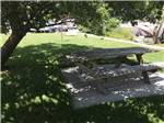 View larger image of Picnic table and people camping at KEYSTONE RV PARK image #5