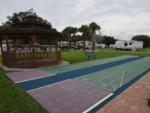 View larger image of Palm trees at OCALA SUN RV RESORT image #7