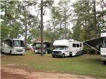 View larger image of RVs camping on grass and dirt area with American flags at SUGAR MILL RV PARK image #2