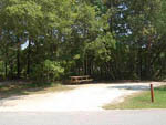 View larger image of Picnic table at THE CAMPGROUND AT JAMES ISLAND COUNTY PARK image #11